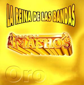 Banda Machos, Pedro Volver, volver cover