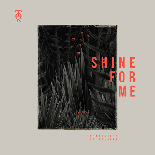 """Shine for Me"" on For the Love of Female Singers"