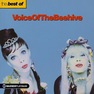 The Best of Voice of the Beehive album