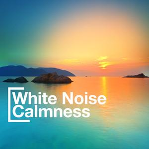 White Noise Calmness Albumcover