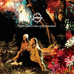 Mind Elevation Albumcover