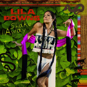 Lila Downs I Envy the Wind cover