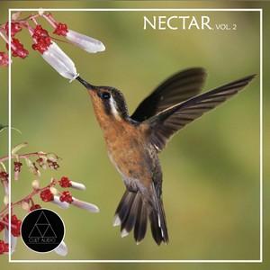 Nectar, Vol. 2 Albumcover