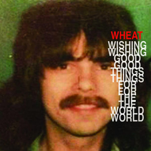 Wishing Good Things for the World album
