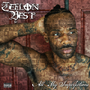 Teflon Vest They Got Love For You cover