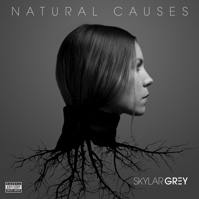 Album cover for Natural Causes by Skylar Grey