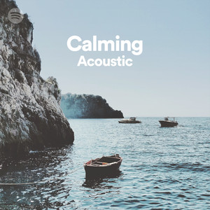acoustic calm on spotify