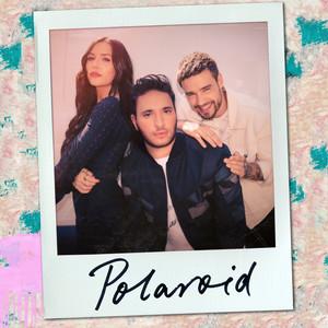 Polaroid Albümü