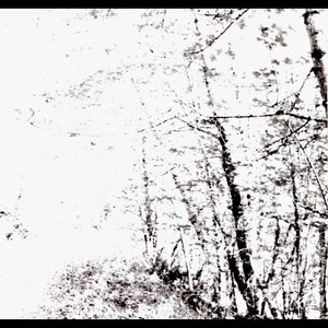 The White EP - Agalloch
