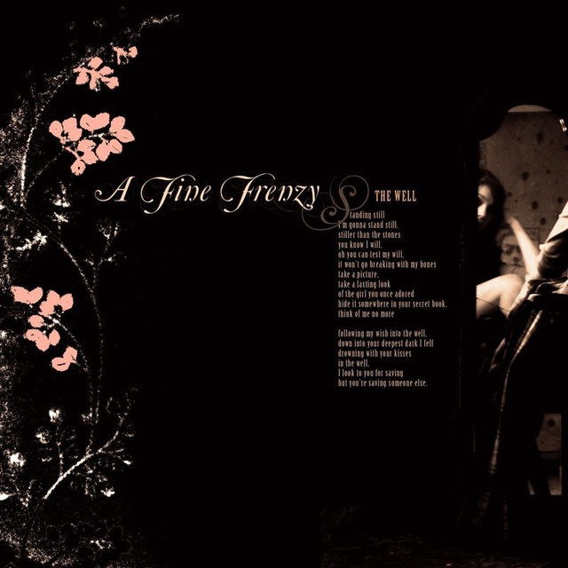 A Fine Frenzy The Well (Demo) album cover