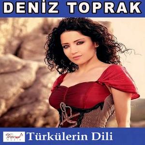 Türkülerin Dili Albümü