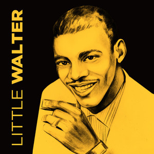 Little Walter Blues With a Feeling cover