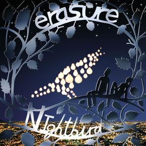 Nightbird album