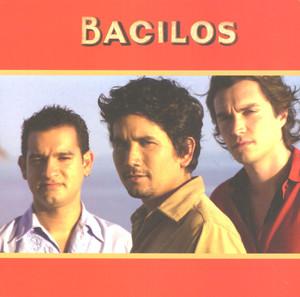 Bacilos  - Bacilos