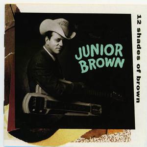 12 Shades of Brown album