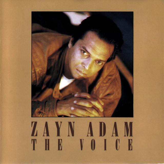 Zayn Adam