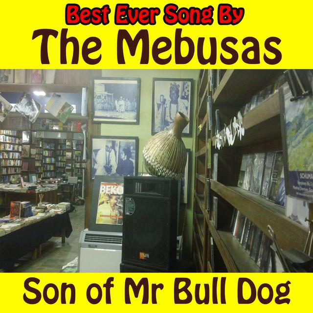 The Mebusas