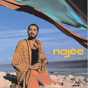 Najee's Theme album