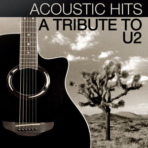 Acoustic Hits - A Tribute to U2 Albumcover
