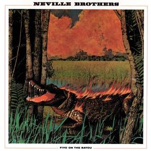Fiyo on the Bayou album