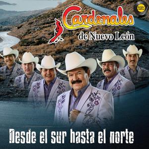 Desde El Sur Hasta El Norte Albumcover