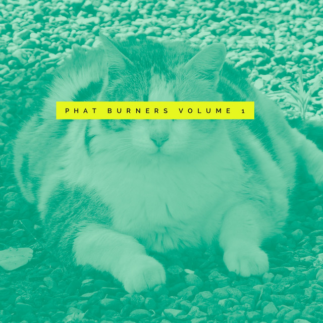 Phat Burners Vol. 1 Acid, Club, Electro and Downbeat