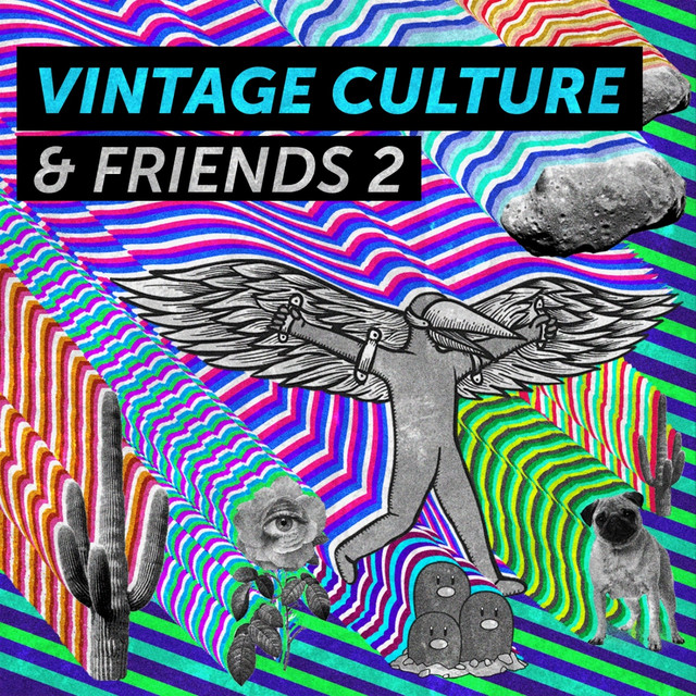 Album cover for Vintage Culture & Friends 2 by Vintage Culture