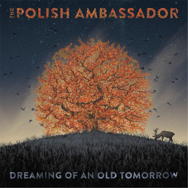 Album cover for Dreaming of an Old Tomorrow by The Polish Ambassador