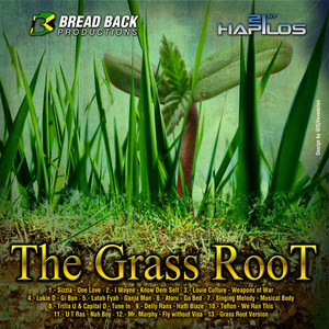 The Grass Root Riddim album
