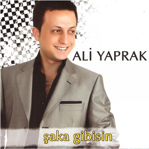 Ali Yaprak