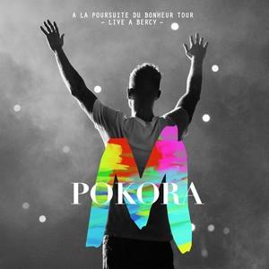 À la poursuite du bonheur Tour [Live à Bercy 2012] Albumcover