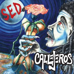 Sed - CALLEJEROS