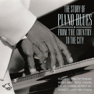 Pinetop Perkins, Henry Gray, Mose Vinson, Big Joe Duskin, Detroit Jr. Booker T Laury, Others Everyday I Have The Blues cover