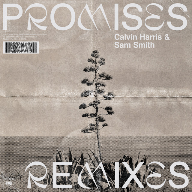 Promises (with Sam Smith) - David Guetta Remix