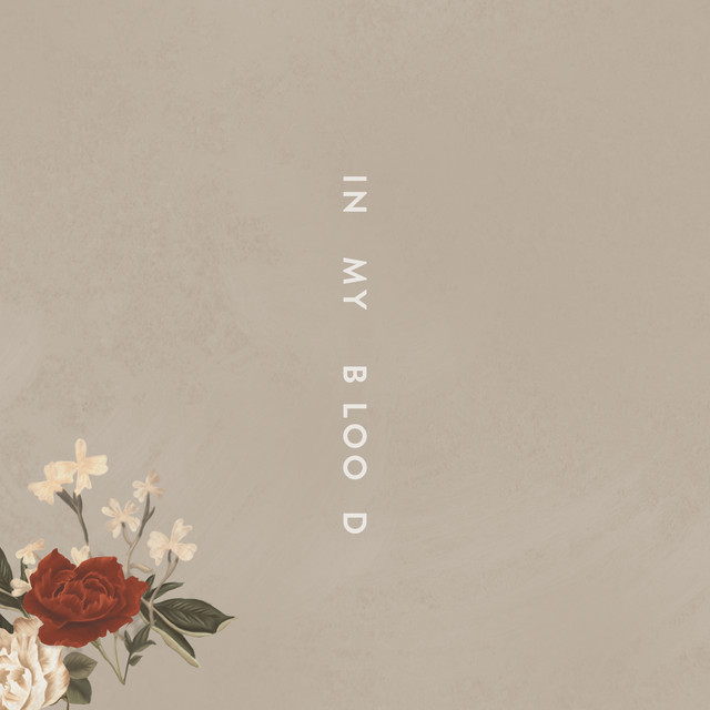 Album cover for In My Blood by Shawn Mendes