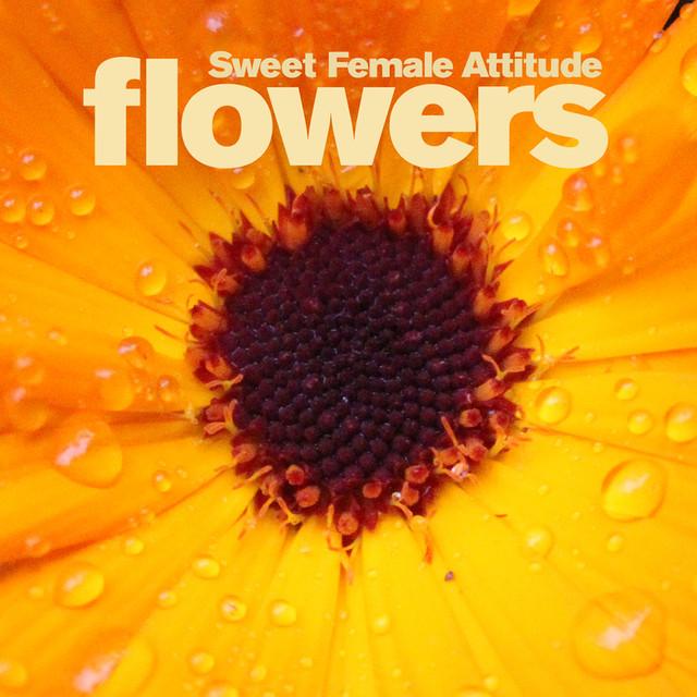 Sweet Female Attitude