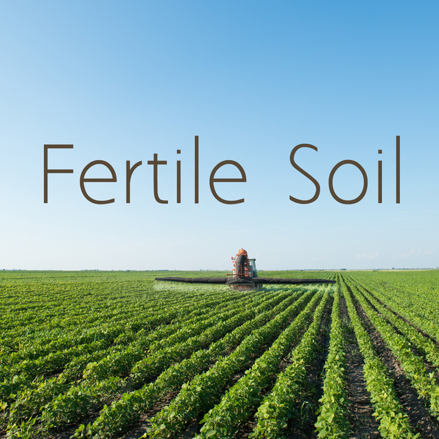 Fertile Soil Albumcover