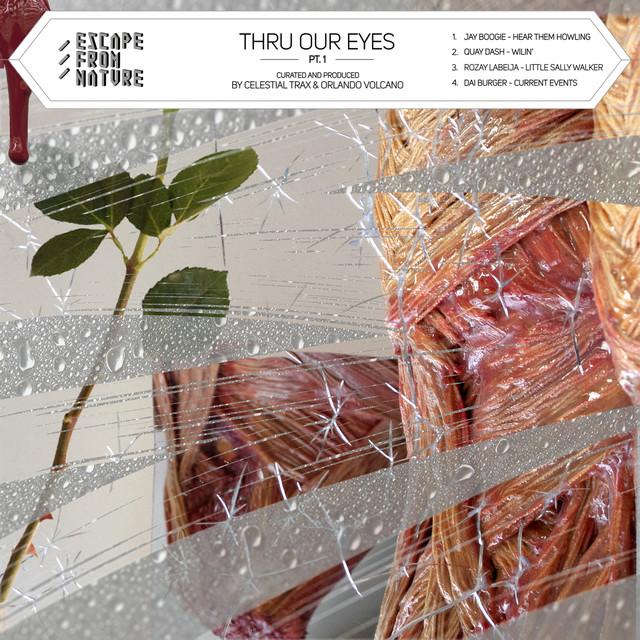 Thru Our Eyes, Pt. 1