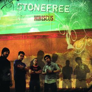 Hibiscus - Stonefree