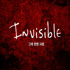 Invisible (인비저블)