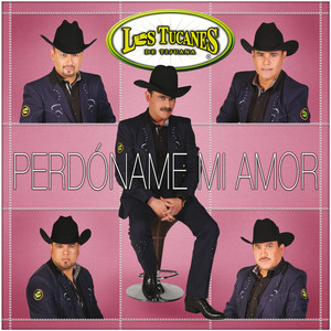 Los Tucanes De Tijuana Perdóname Mi Amor Songtexte Lyrics