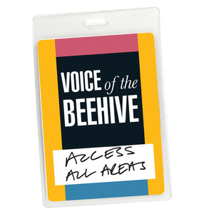 Access All Areas - Voice of the Beehive Live (Audio Version) album