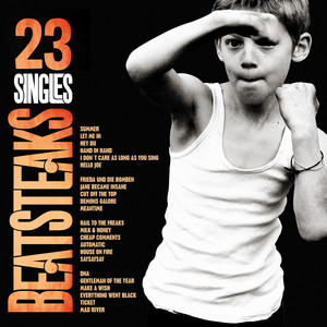 23 Singles - Beatsteaks