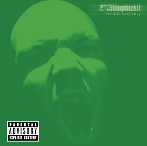 Limp Bizkit Down Another Day cover
