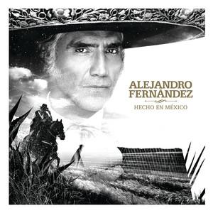 Hecho En México album
