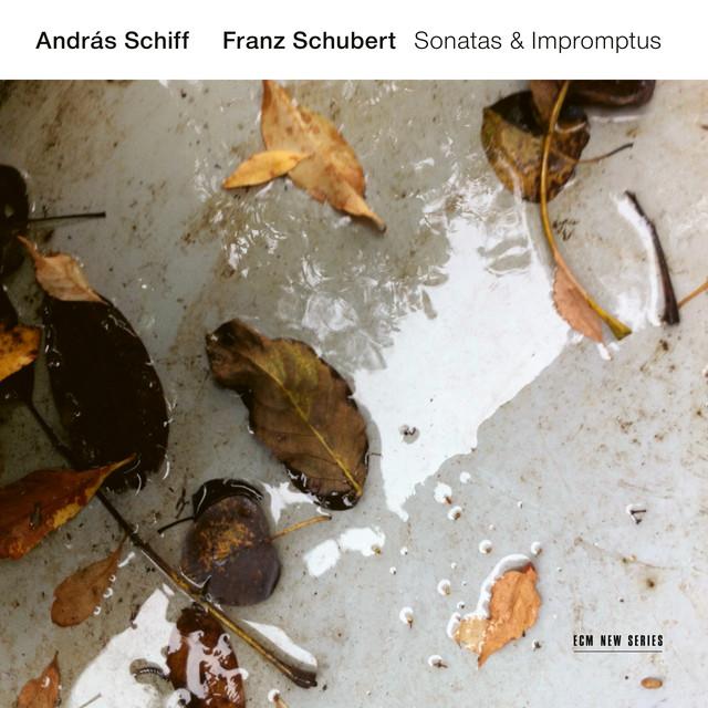 Album cover for Franz Schubert: Sonatas & Impromptus by Franz Schubert, András Schiff