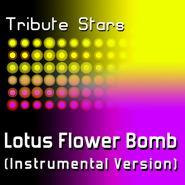 Wale Feat Miguel Lotus Flower Bomb Instrumental Version By