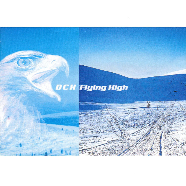 Flying High (1999 Mixes)