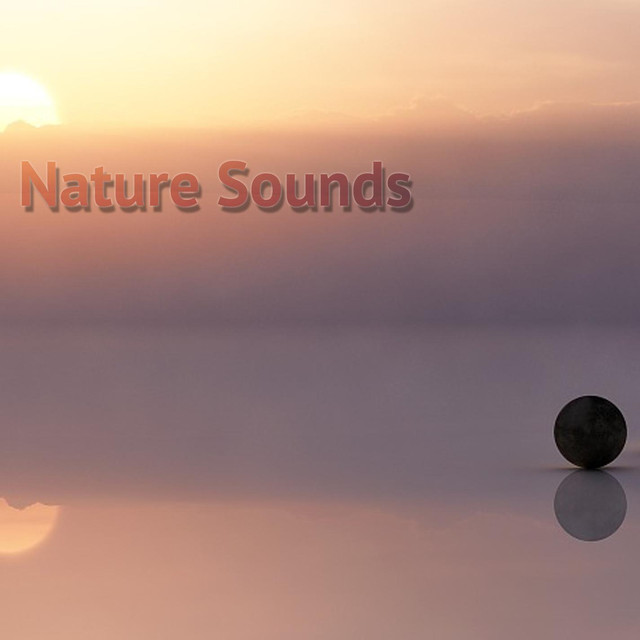 Album cover for Nature Sounds by Meditación Musical