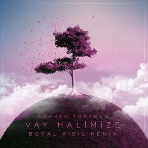 Vay Halimize (Boral Kibil Remix) Albümü